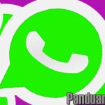 tips android, tips whatsapp, backupdata