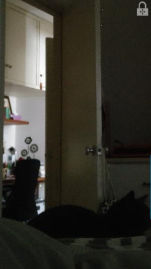 OnePlus 3 Default Camera 3